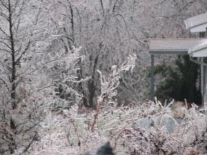 08 Ice Storm