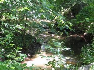 Creek at PB2